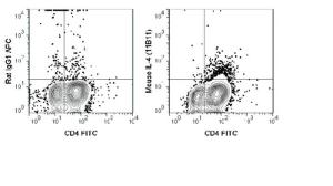Anti-IL4 Rat Monoclonal Antibody (APC (Allophycocyanin)) [clone: 11B11]