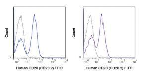 Anti-CD28 Mouse Monoclonal Antibody (FITC (Fluorescein)) [clone: CD28.2]