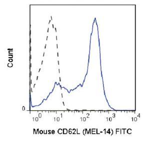 Anti-SELL Rat Monoclonal Antibody (FITC (Fluorescein)) [clone: MEL-14]