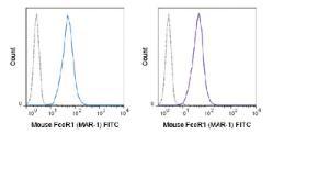 Anti-FCER1 Armenian Hamster Monoclonal Antibody (FITC (Fluorescein)) [clone: MAR-1]