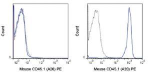 Anti-CD45.1 Mouse Monoclonal Antibody (PE (Phycoerythrin)) [clone: A20]