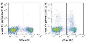 Anti-IFNG Rat Monoclonal Antibody (PE (Phycoerythrin)) [clone: XMG1.2]