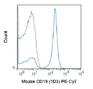 Anti-CD19 Rat Monoclonal Antibody (PE (Phycoerythrin)/Cy7®) [clone: 1D3]