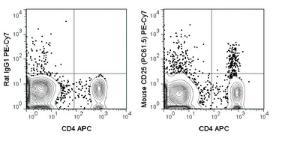 Anti-IL2RA Rat Monoclonal Antibody (PE (Phycoerythrin)/Cy7®) [clone: PC61.5]