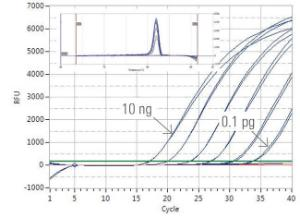 Luminaris Color HiGreen qPCR Master Mix