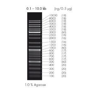DNA ladder mix, peqGOLD | VWR